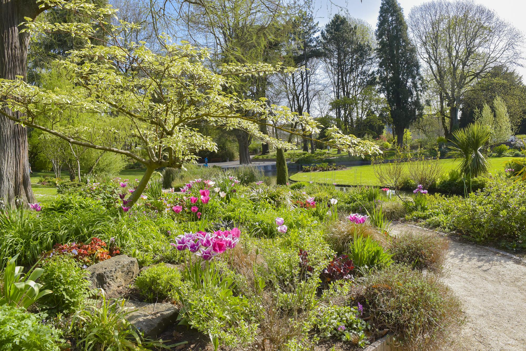 Parcs Et Jardins | Ville De Limoges encequiconcerne Conception Jardin Limoges