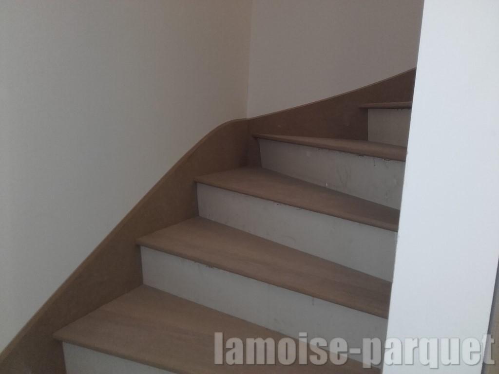 Pose De Marche D Escalier Avec Contre Marche Et Plinthe En ... destiné Plinthe Carrelage Escalier