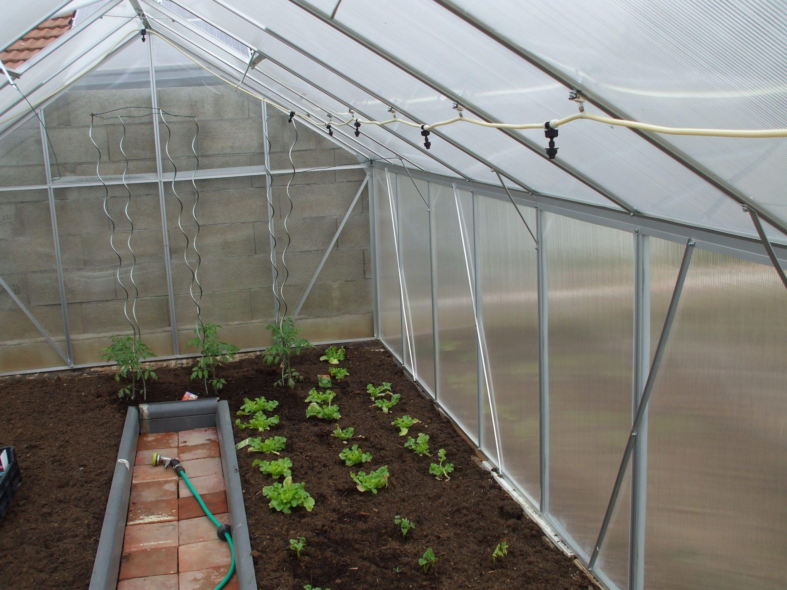 Pour Votre #potager, Optez Pour La #serre De Jardin En Alu ... destiné Serre De Jardin Polycarbonate 18M2