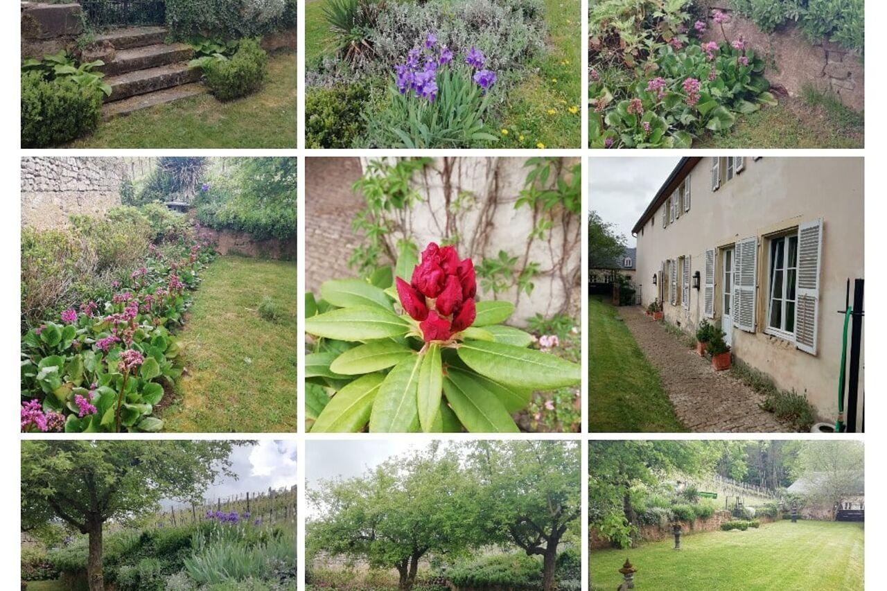 Un Jardin De France - Sierck Les Bains | Französische Küche ... serapportantà Un Jardin De France Sierck Les Bains