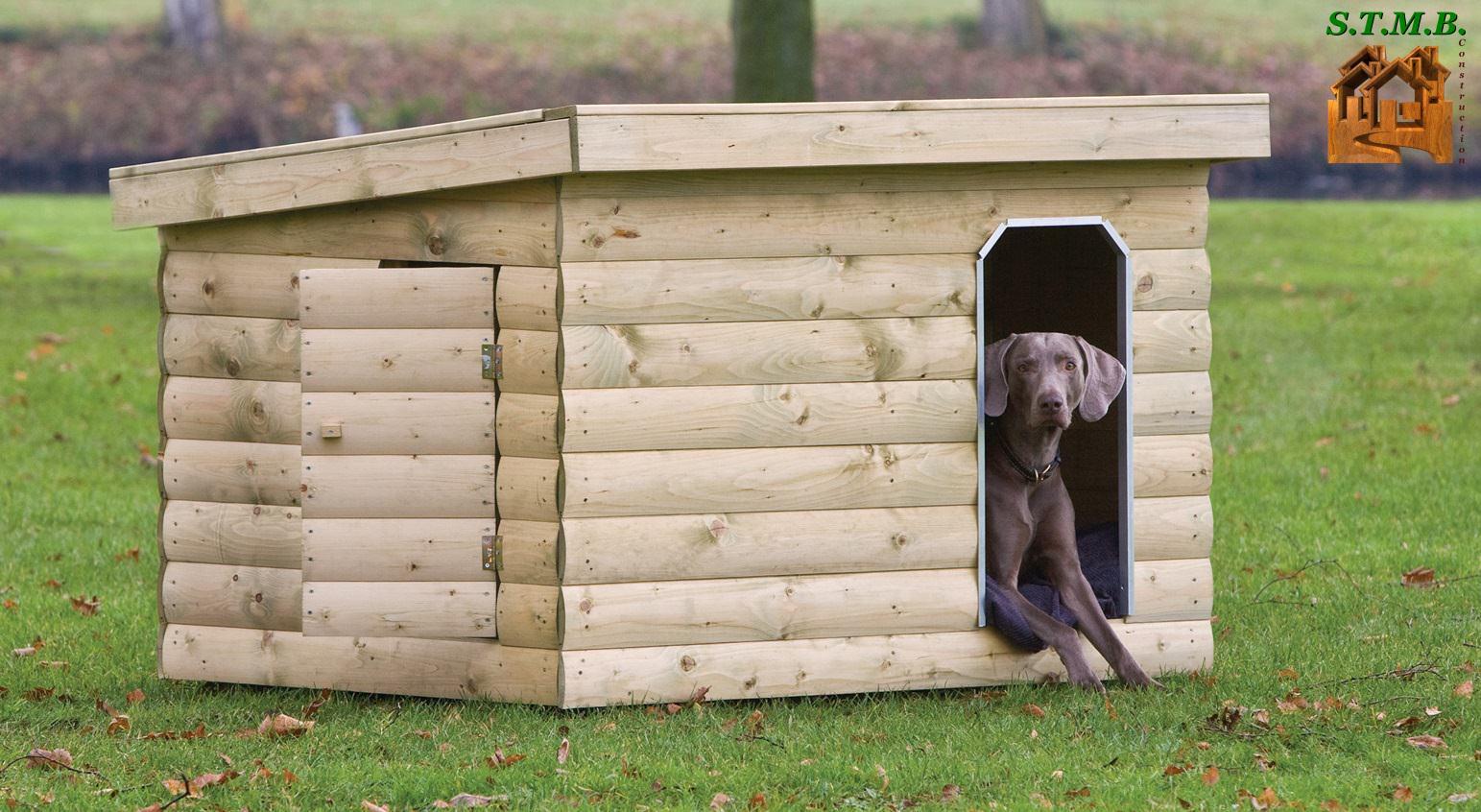 Abri De Jardin Pour Un Animal Domestique dedans Corpor Abri De Jardin En Kit