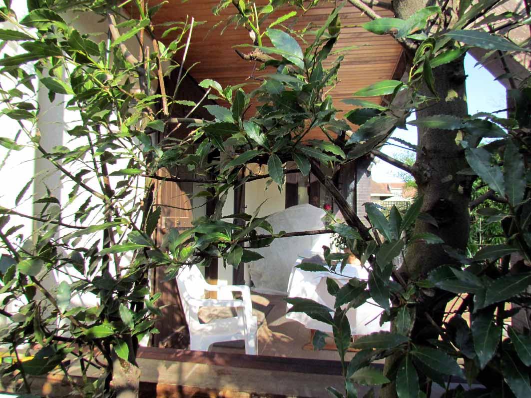 Fermeture D'Un Côté De Terrasse Couverte | Au Jardin De Mo ... avec Fermer Un Cote De Terrasse