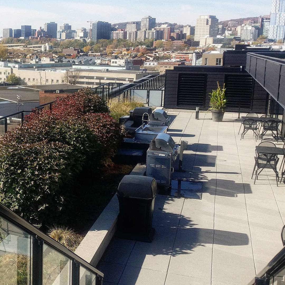 Griffintown Montreal A Neighborhood On The Rise | Discover ... intérieur Mitchell Gold Montreal