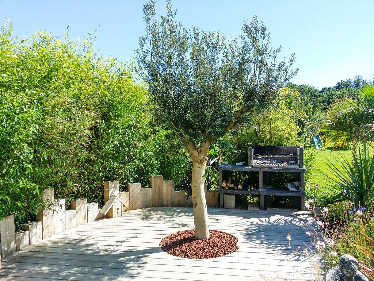 Jardin Breton Aux Allures De Jardin Exotique I Détente Jardin encequiconcerne Idee Massif Avec Olivier