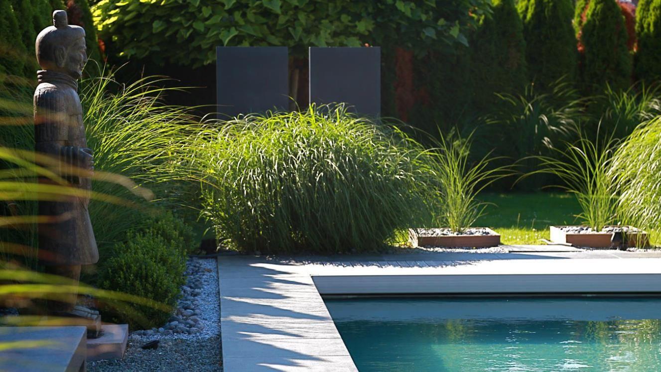Piscine Contemporaine Au Milieu De La Végétation Dans ... intérieur Déco Piscine Zen