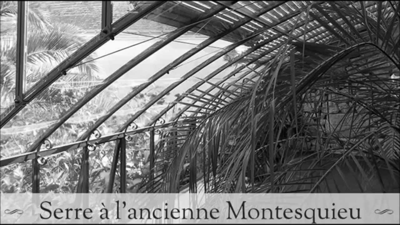 Serre En Verre À L'Ancienne Modèle Montesquieu intérieur Serre En Fer Forgé D'Occasion