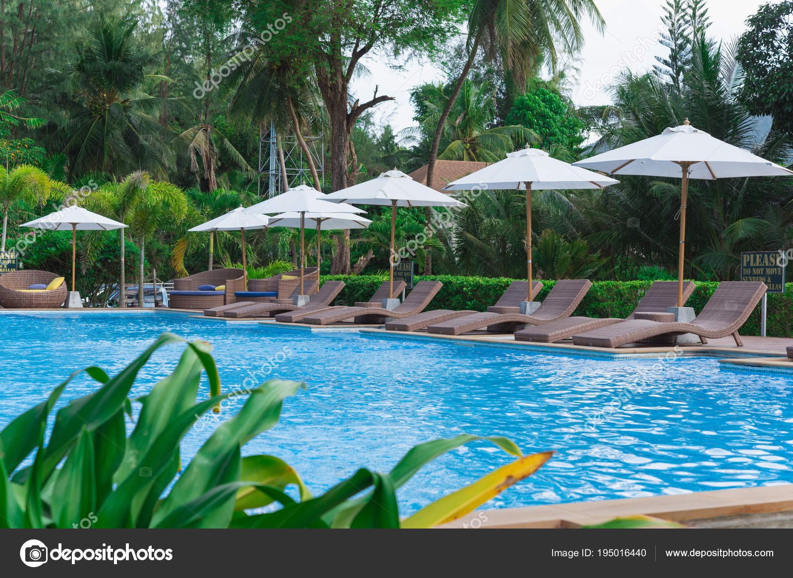 Swimming Pool And Bar By A Beach 195016440 encequiconcerne Piscine O'Bya