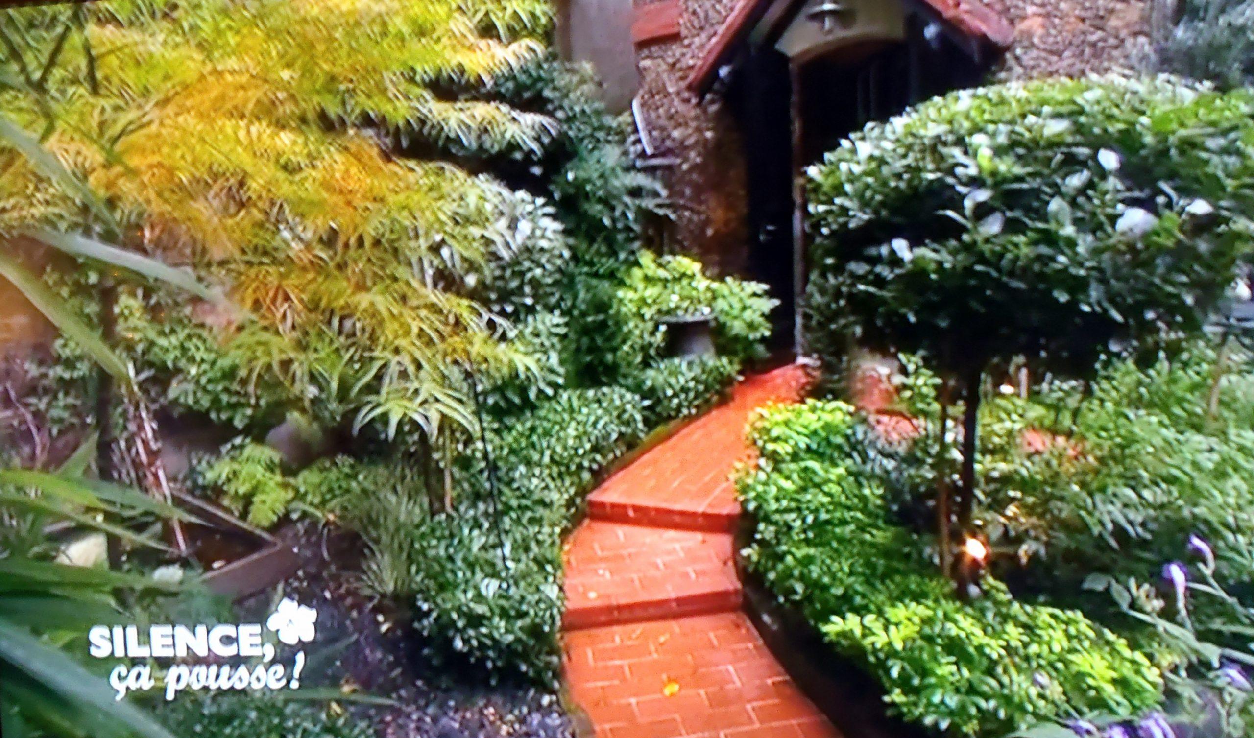Aménager Un Petit Jardin Franco-Anglais D'Ombre En Région ... à Concevoir Un Petit Jardin Anglais