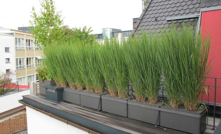 Brise Vue Balcon En Quelques Idées Intéressantes tout Plantes Pour Bords De Piscine