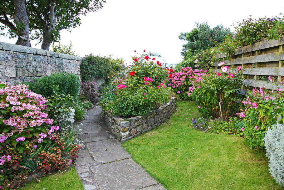 Ces Plantes Incontournables Dans Un Jardin Anglais destiné Concevoir Un Petit Jardin Anglais