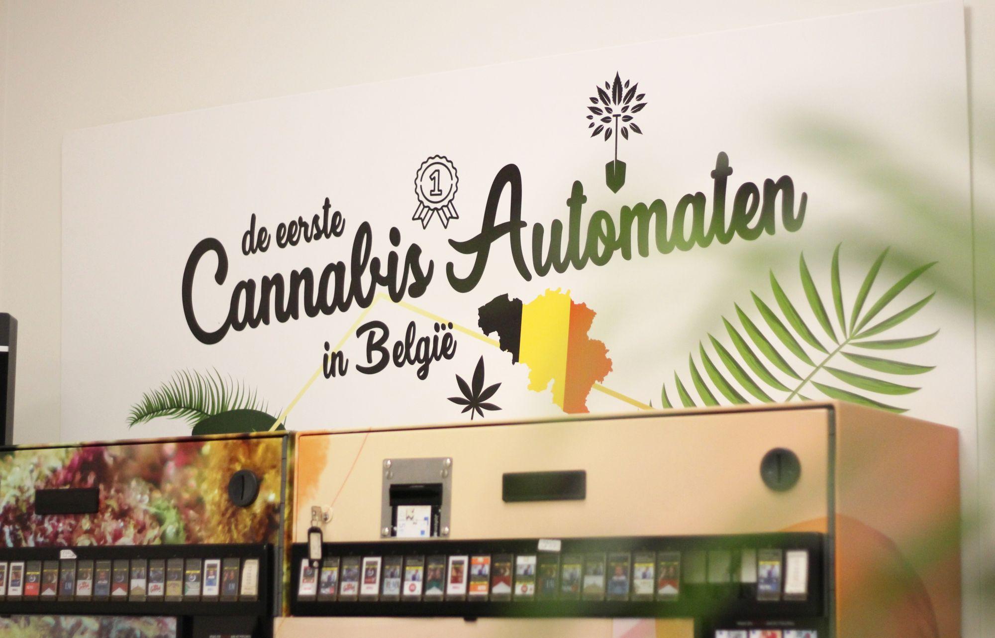 De Boeren: Le Parfait Exemple D'Un Magasin De Cannabis ... encequiconcerne Magasin Tile Expert