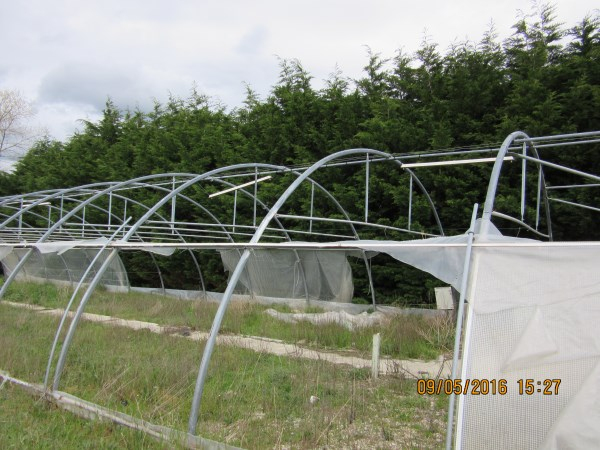 Espaces Verts / Jardinage - Armature De Serre Richel ... avec Arceaux De Serre Occasion