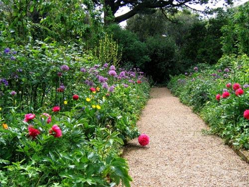 Jardin Anglais : Les Grands Principes avec Concevoir Un Petit Jardin Anglais