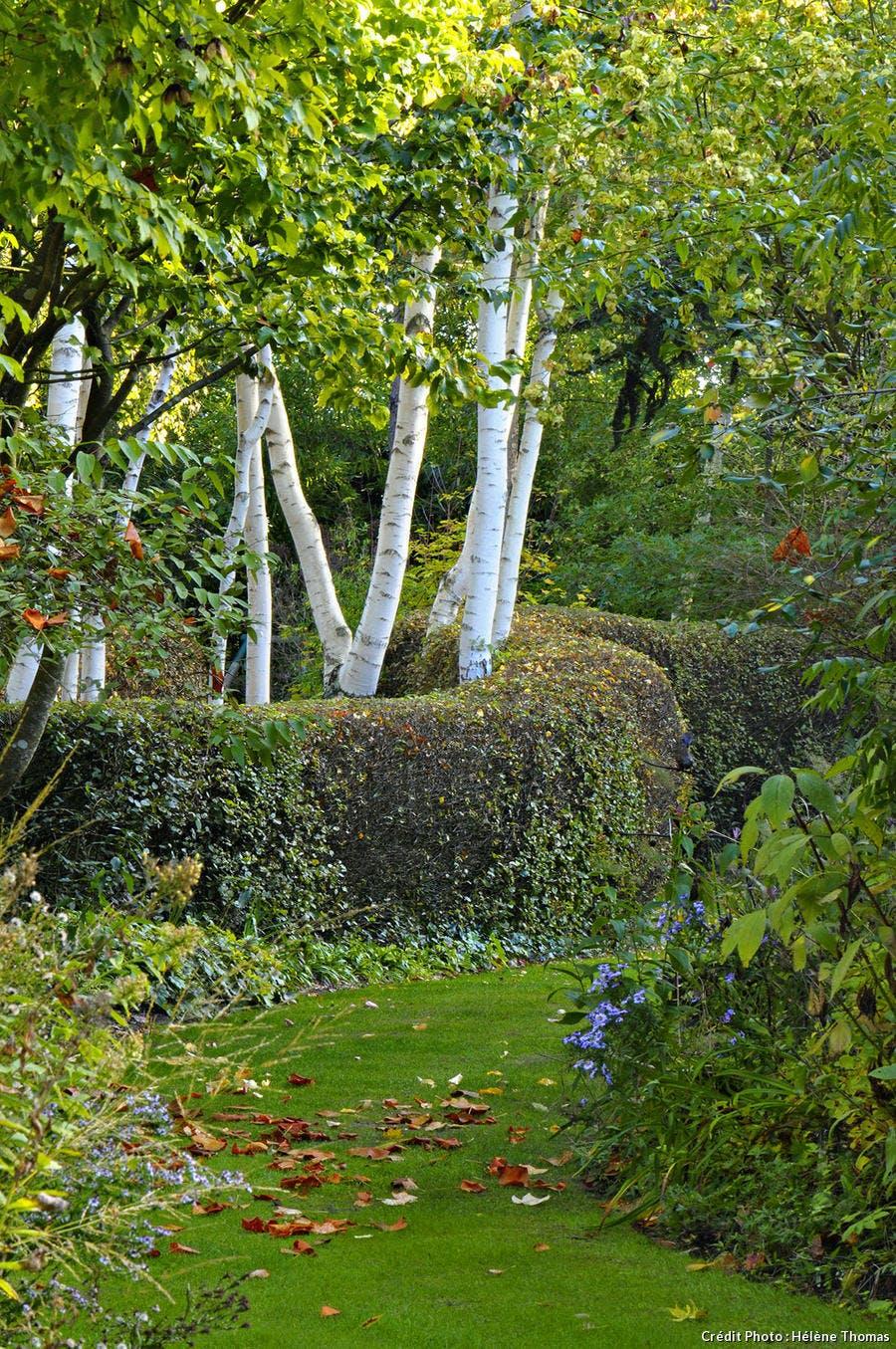 Le Bon Coin Jardinage 35 Best Of Le Jardin Du Petit ... serapportantà Jardinage Le Bon Coin85