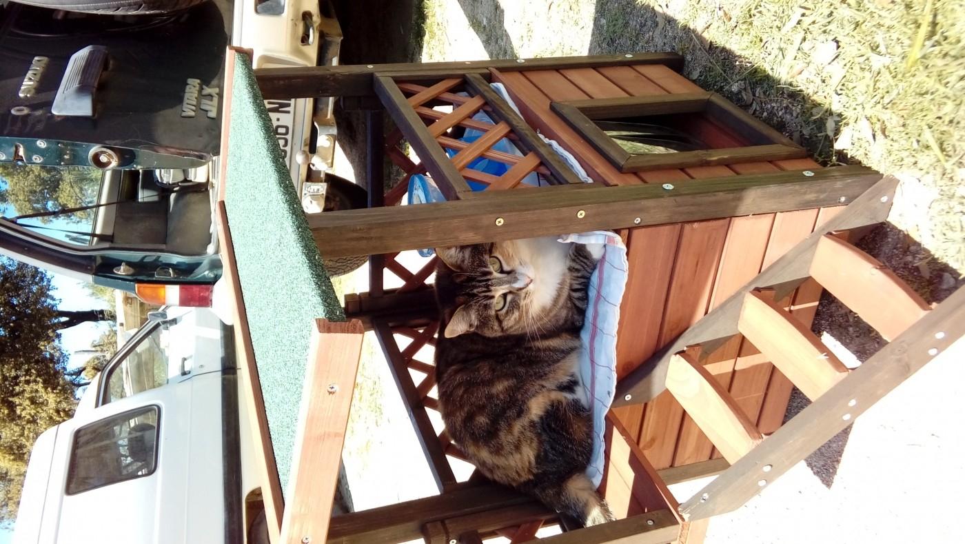 Maisonnette Pour Chat Miky Lodge Zolia avec Maisonnette Bois Camille
