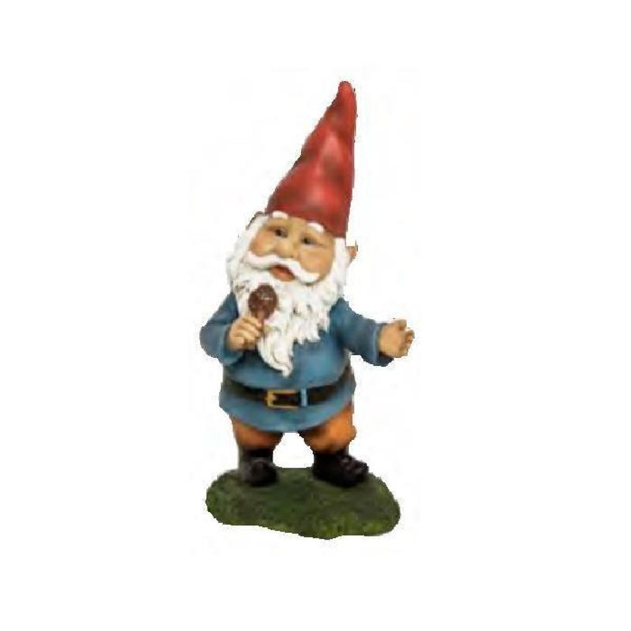 Statuette Nain De Jardin Avec Micro 20 Cm - Achat/Vente ... destiné Nain De Jardin Doigt D'Honneur Pas Cher