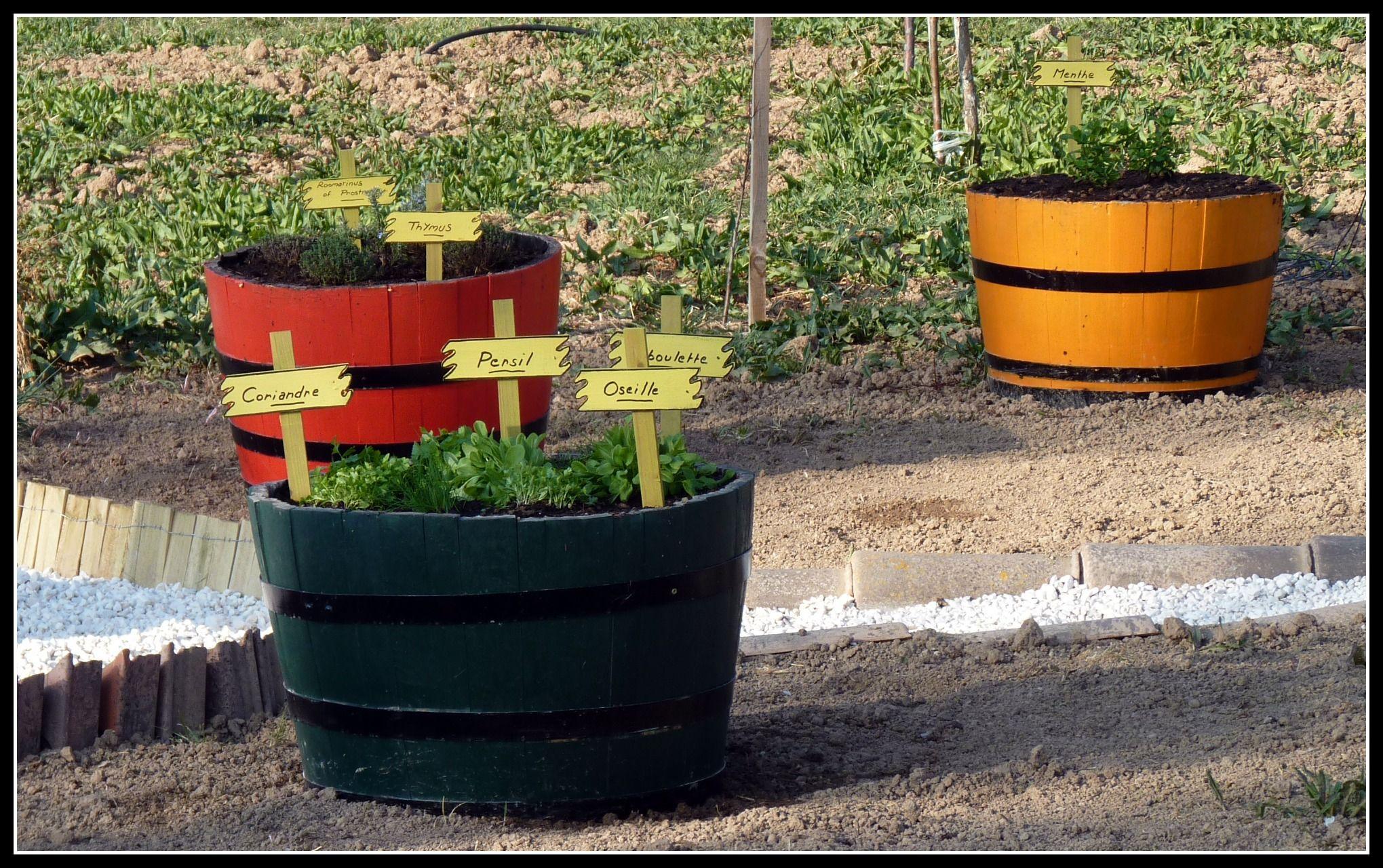 Un Tonneau Coupé En Deux Idéal Pour Les Herbes Du Jardin ... à Salon De Jardin En Tonneau